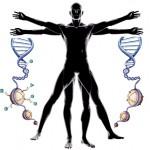 epigenetica-i-esport